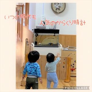 ばら1 (2).jpeg